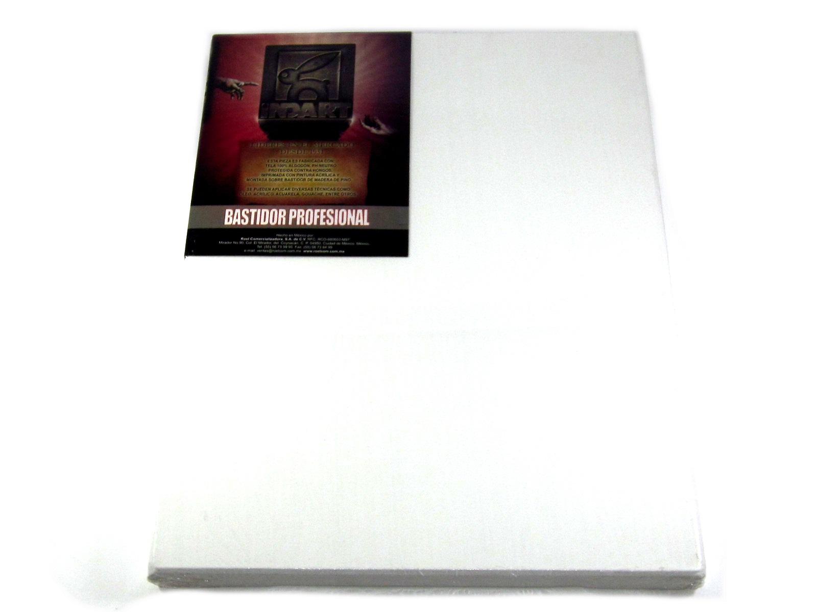 BASTIDOR TELA PROF 30 X 40 INDART - Proveedora de Oficinas